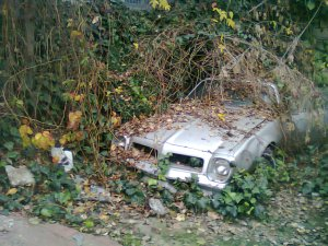 Ruined car, Cihangir, 2014.11.29