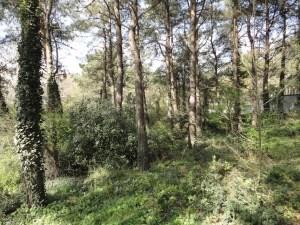 İTÜ Maslak Kampüsü, 2016.03.12