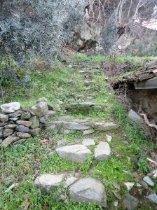 Stone steps in grassy hillside, Şirince, January, 2018