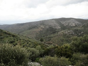 Landscape, green hills, Şirince, January, 2018