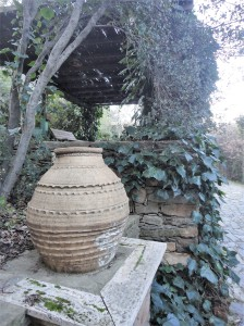 Large clay pot against dark vines
