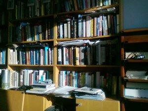 Bookshelves in morning sun